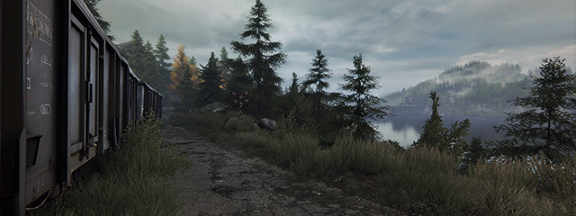 The Vanishing of Ethan Carter. Дорогой Итан