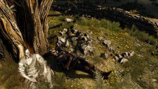 Ведьмак 3: Дикая Охота, Каменные сердца, Кровь и Вино, обзор, мысли, review, witcher